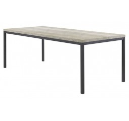 Eettafel Diago 160x90 silver decor